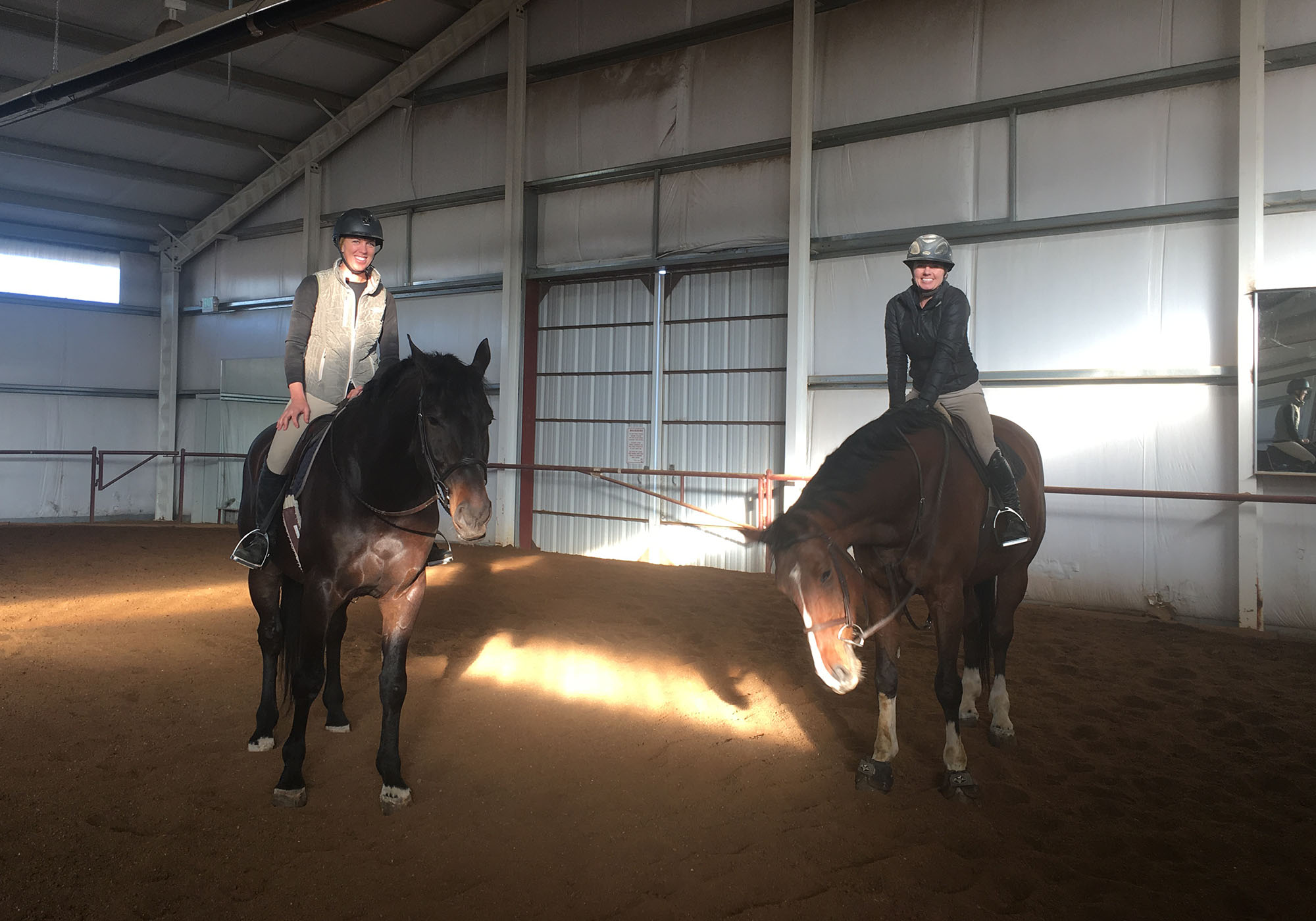 Boarding & Training   Little Raven Ranch