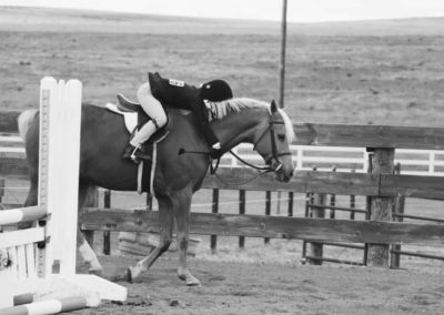 charity horse show 1