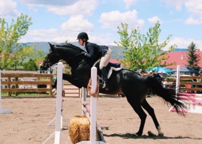 charity horse show 2