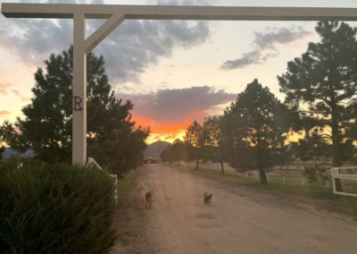 sunset on ranch